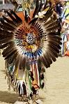 feather pow wow dancer