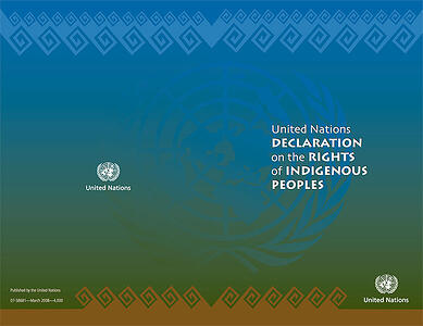 UNDRIP document cover