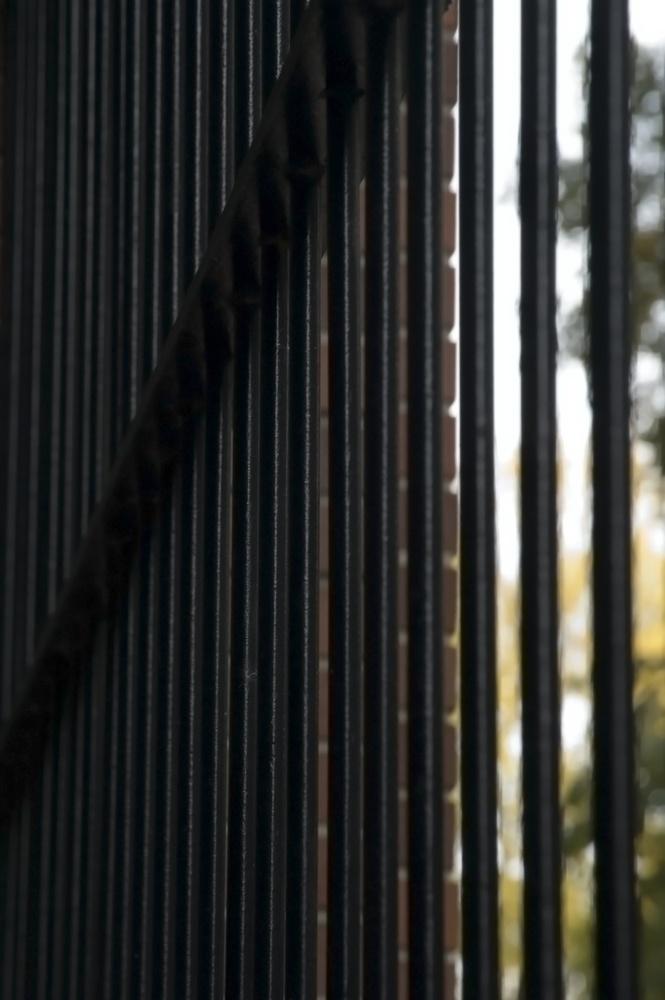 indigenous_incarceration