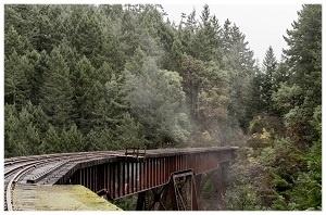 rail_line_Austin_Smith_679804_edited.jpg